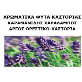 ΚΑΡΑΜΑΝΙΔΗΣ ΠΑΝ. ΧΑΡΑΛΑΜΠΟΣ